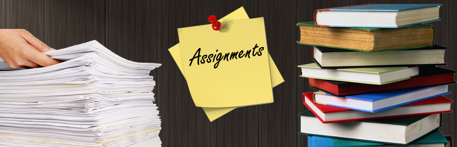 Assignment lab